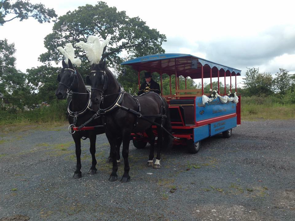 downfield-carriages-2