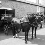 downyfield-carriages-1